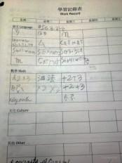 Work Record