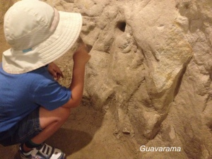 Looking at rocks of limestone since 5 year olds can't go on tour.
